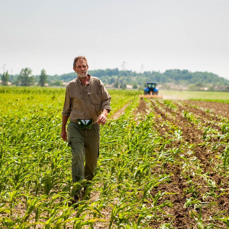 céréales, maïs, agriculteur, Sébastien Garcia, des Sites et des Lettres, création de site, photographie